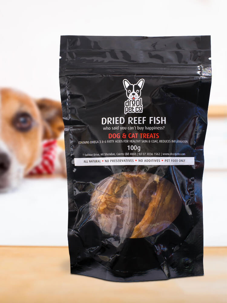 Photograph of a jack russell looking forward at a bag of Drool Pet Co. Dried fish dog treats 100g