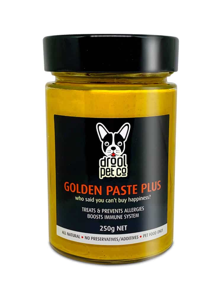 photograph of a jar with a black lid containing golden paste with a label on front with Drool Pet Co. Logo