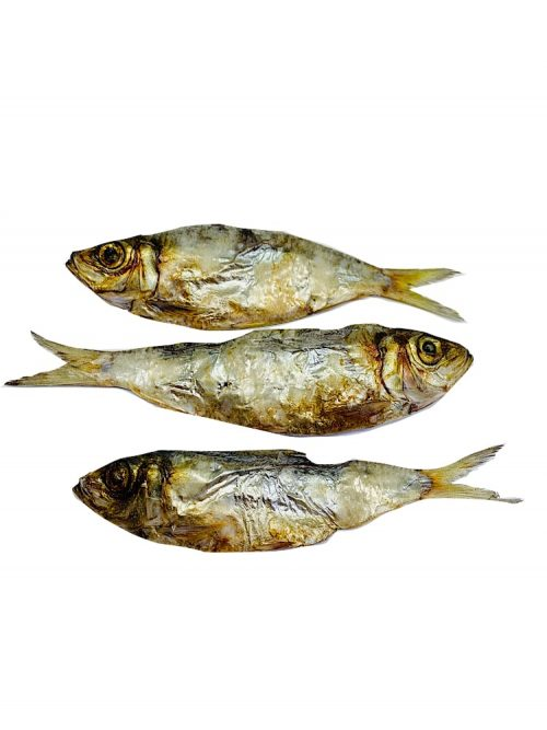 Drool Pet Co. dried sardines dog and cat treats. Photograph of three dried whole sardines on a white background.