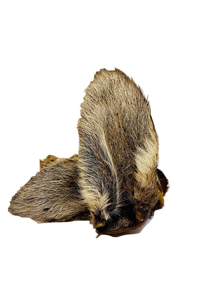 Photograph of two Drool Pet Co. kangaroo ears complete with hair on a white background.